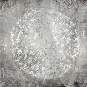 Dandelion Clock Charm – Framed Art Print For Sale – Surrounds Gallery West Byfleet Surrey – Artist PI Creative Art