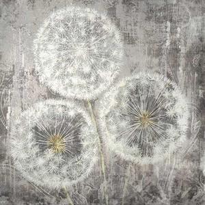 Dandelion Clocks Bewitch – Framed Art Print For Sale – Artist Carol Kavanagh PI Creative Art